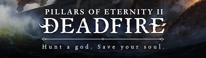 В Pillars of Eternity II можно плавать на собственном корабле, раскрыты новые цели