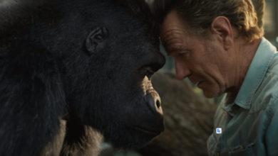 Photo of Появился трейлер фильма Disney с Брайаном Крэнстоном и говорящей гориллой — EcoGamer
